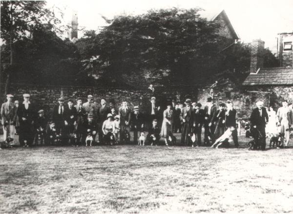 First_Staffordshire_Bull_Terrier_show_1935.jpg