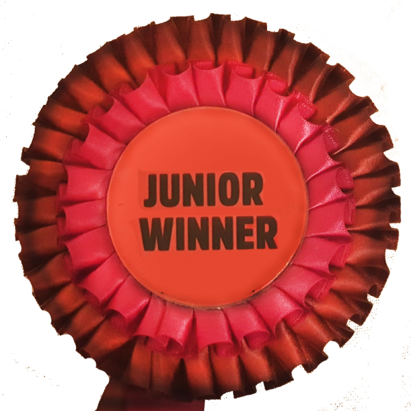 zg-junior-winner1.png